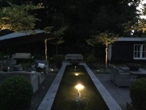 vijver-avond-zomer2016